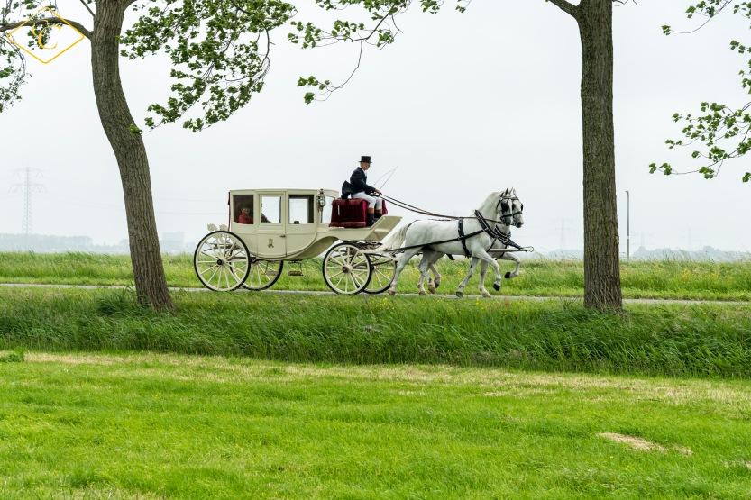 bruiloft-astrid-en-peter-par-pa-fotografie-8577-1klcc